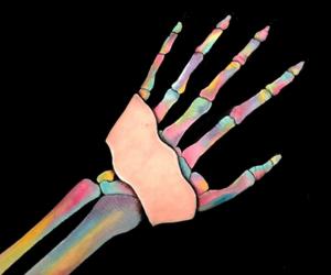 anatomy, arm, and art image