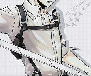 shingeki no kyojin, attack on titan, and levi ackerman image