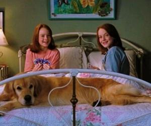 movie, lindsay lohan, and dog image
