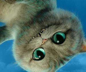 alice, cat, and movie image
