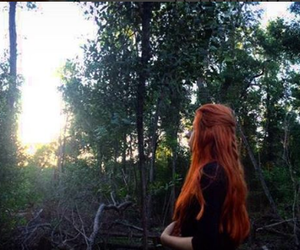 ginger, tree, and tumblr image