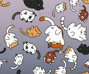 cat, wallpaper, and animals image