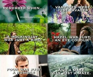 twilight, divergent, and the maze runner image