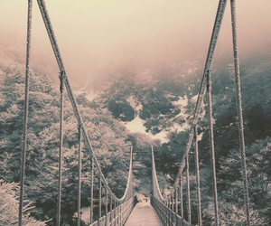 bridge, nature, and winter image