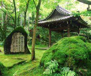 asia, culture, and forest image
