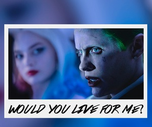 love, background, and harley quinn image