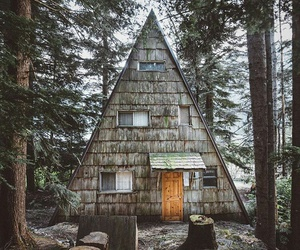 Dream, forest, and a house of dream image