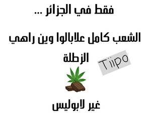 arabic, lol, and dz image