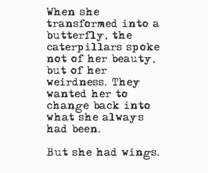 butterfly, quote, and change image