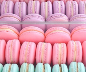 pink, food, and pastel image