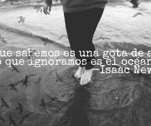 black and white, frase, and legs image