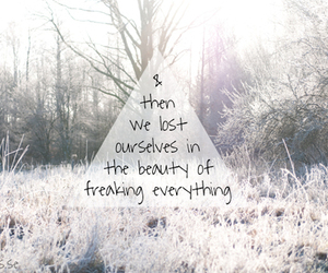 quote, beauty, and lost image