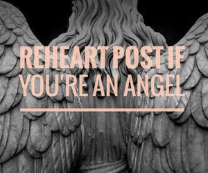 angel, text, and we heart it image