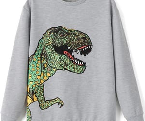 clothes and dinosaur image
