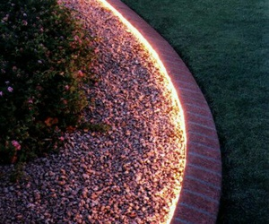 light and garden image