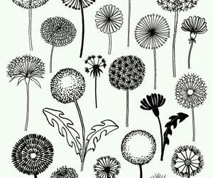 flowers, diy, and drawing image