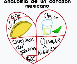 mexicano, tacos, and tequila image