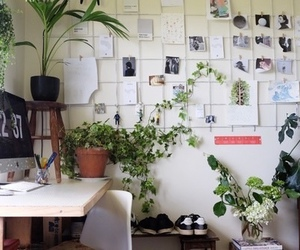 plants, room, and tumblr image