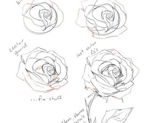 drawing, rose, and draw image