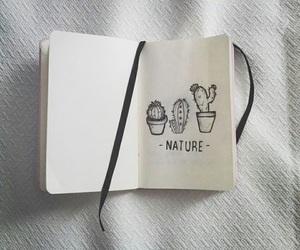nature, cactus, and art image