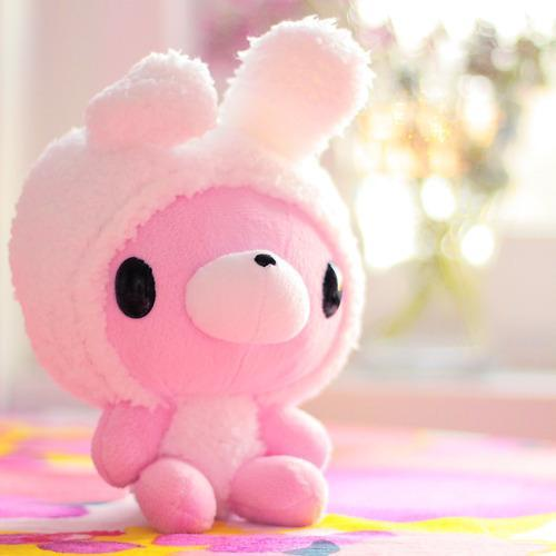 Bunny Cute Pink Teddy Bear Inspiring Picture On Favim Com