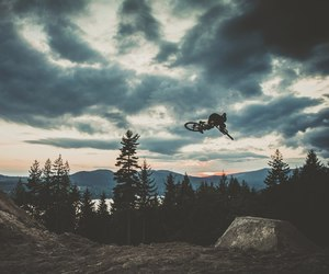 bike, forest, and sky image