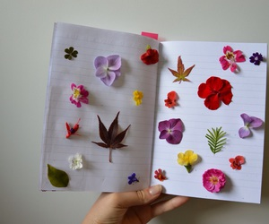 blooms, cool, and book image