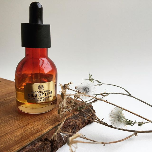 oil, skin, and the body shop image