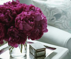 flowers, peonies, and home image