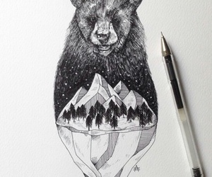 bear, draw, and art image