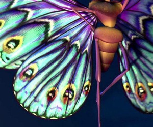 butterfly and disney image