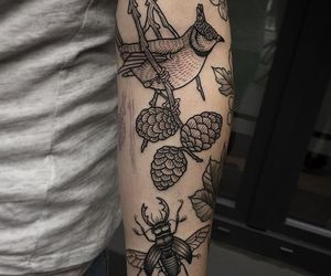 bird, tatto, and cool image