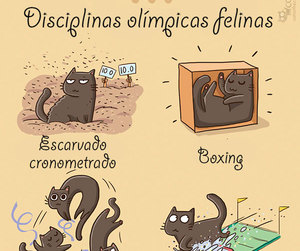 cats, draw, and funny image