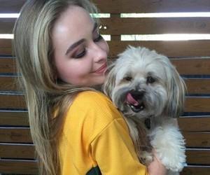 sabrina carpenter, dog, and icon image