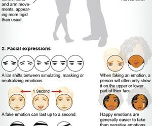 brain, lying, and deception image