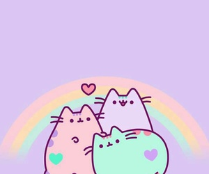 cat, kitty, and rainbow image