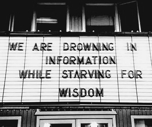 drown, wisdom, and information image