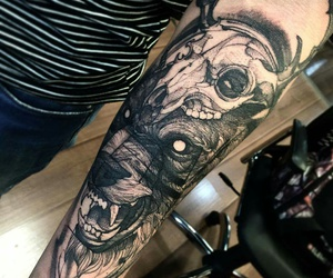 arm, tattoo, and wolf image
