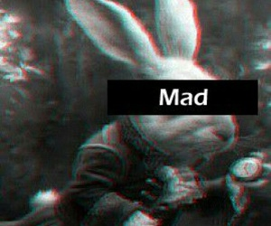 mad, rabbit, and alice in wonderland image