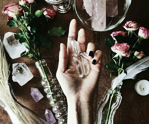 feathers, flowers, and hand image