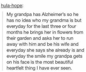 grandma, grandpa, and cute image
