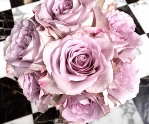 flowers, roses, and purple image