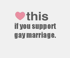 gay, lesbian, and lgbt image