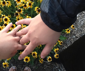 fingers, hands, and flowers image