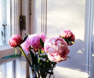 home, flowers, and pink image