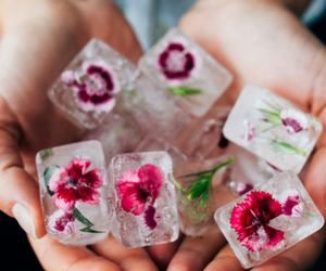flowers, ice, and pink image