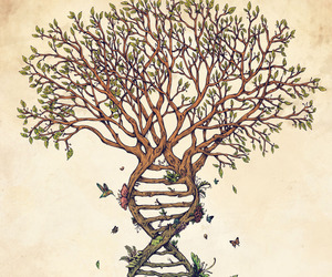 tree, art, and DNA image