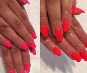 nails, nailart, and neon pink image