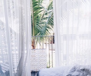 bed, white, and palms image