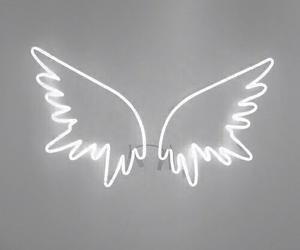 Wings Tumblr